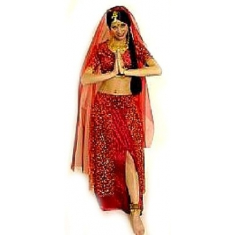 Bollywood Dress Bharani rot